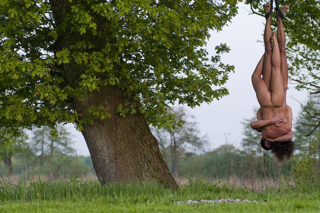 De Tuin der Lusten  2010 Junne